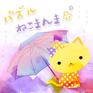 ねこまんま梅雨